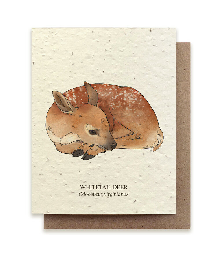 Wildlife Card Set - Plantable Seed Paper